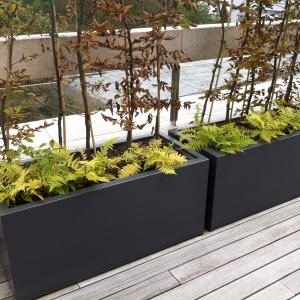 bac-plantes-terrasse