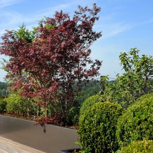 toiture-terrasse1